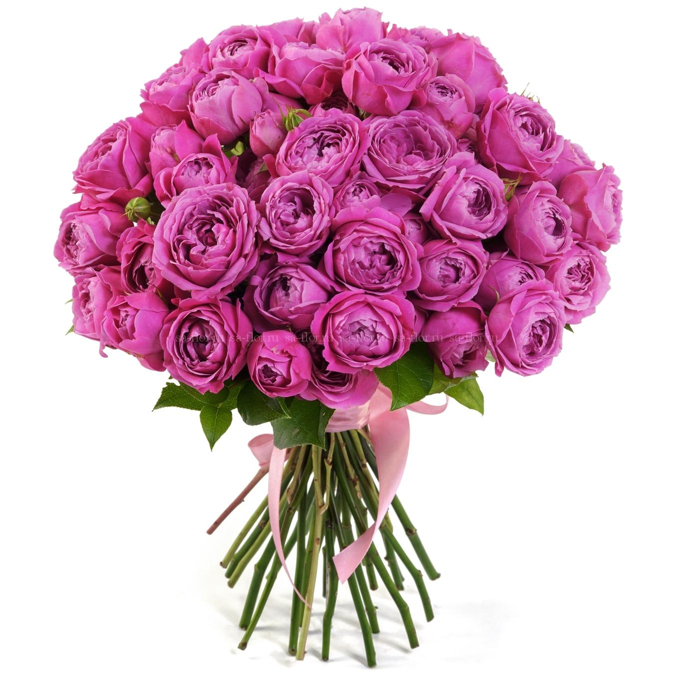 розовые розы фото букеты красивые по-настоящему райский остров
